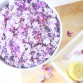 Fliedersirup, Frühling, Blüten, Sirup, Sommer
