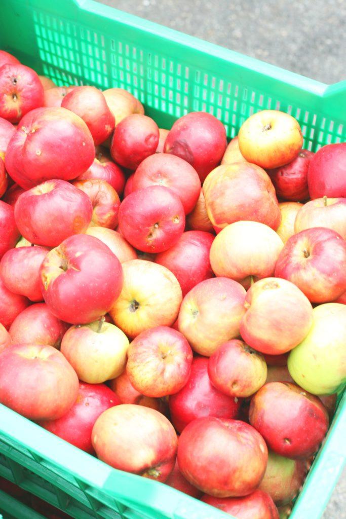 Destillerie Kohler Apfel