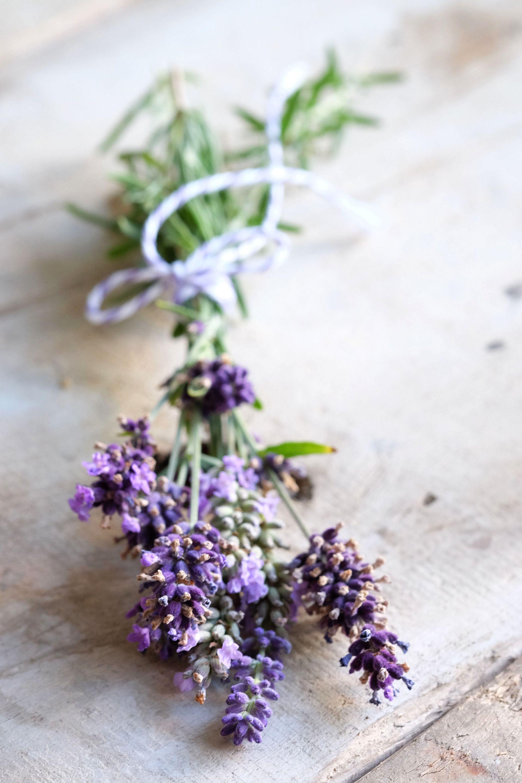 Aprikosen-Lavendel-Spritz