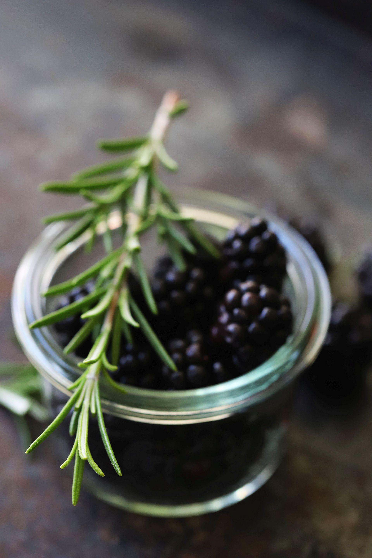Bergamotte insight: Rosmarys Blackberry-Mott-Smash